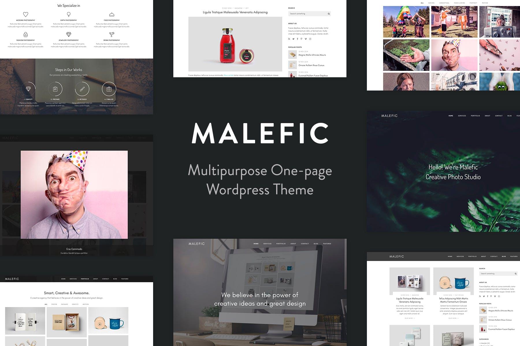 Malefic - 单页响应式WordPress主题模板