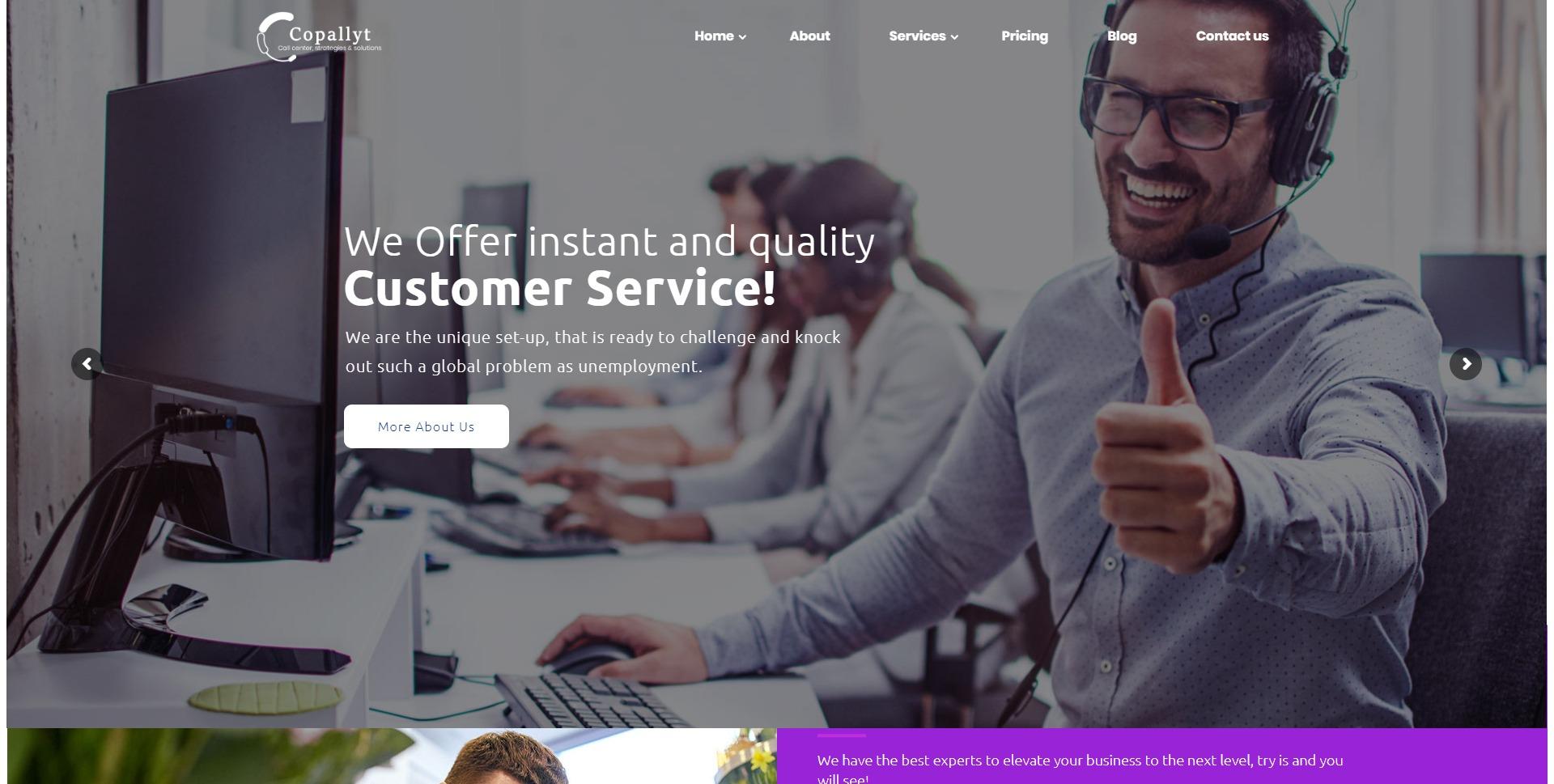 Copallyt-呼叫中心电话销售推广WordPress主题