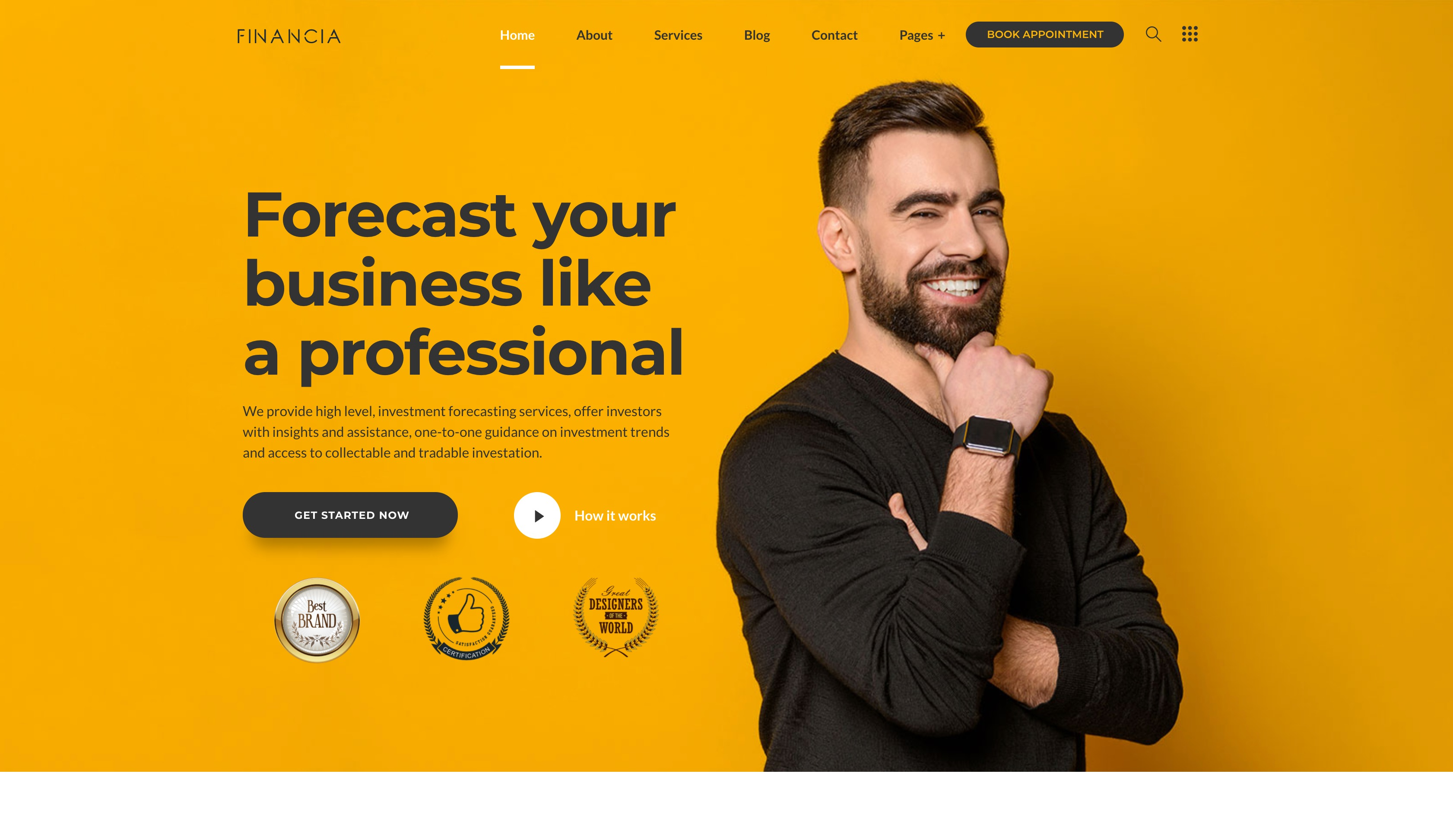 Financia-报税金融财务记账WordPress主题