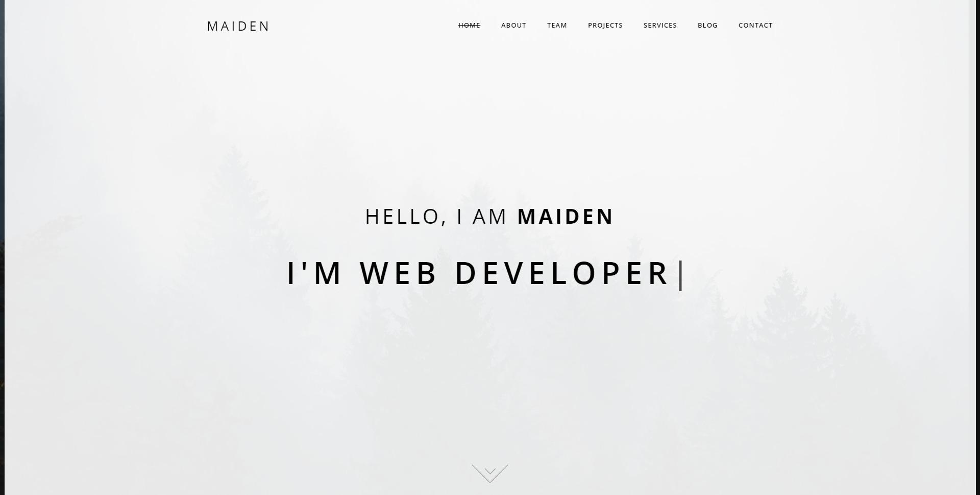 Maiden-响应式个人作品展示WordPress模板