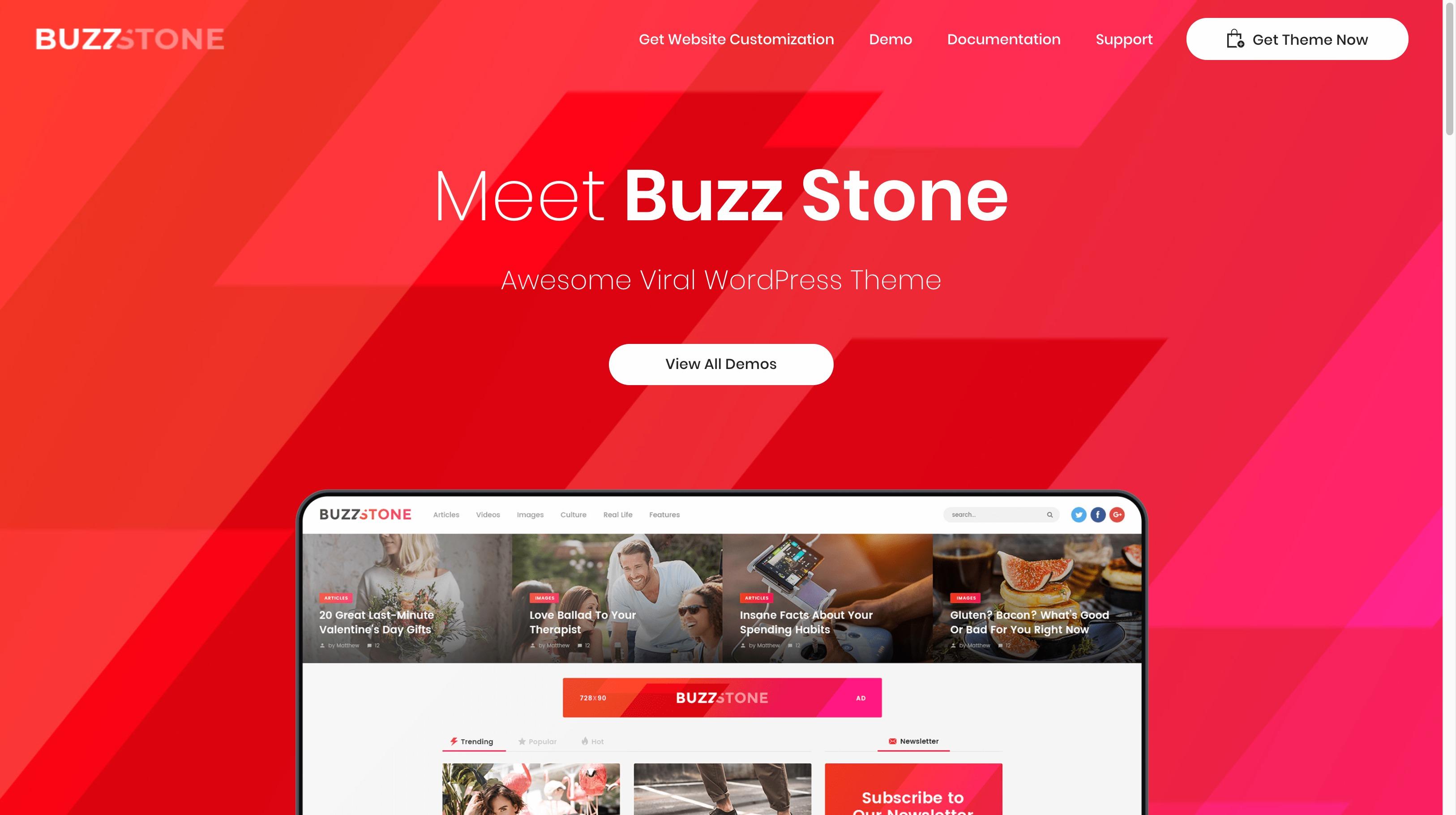 Buzz Stone -杂志博客新闻WordPress主题