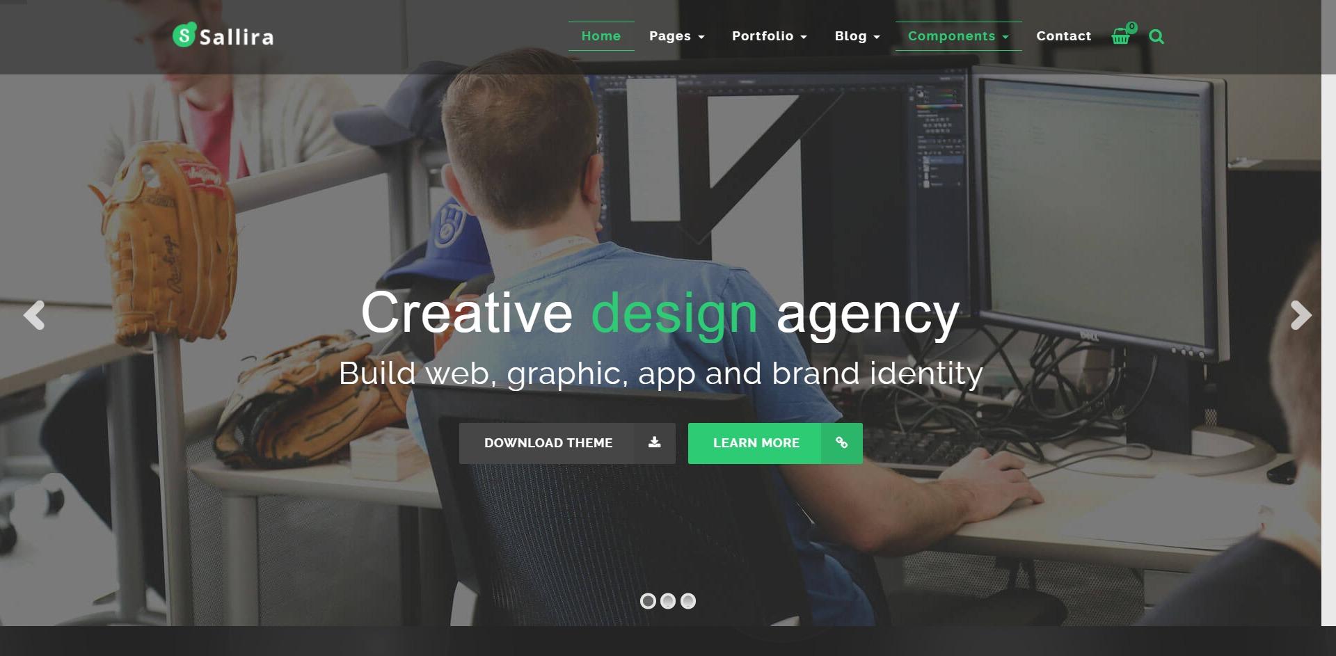Sallira-多用途营销企业商务WordPress主题