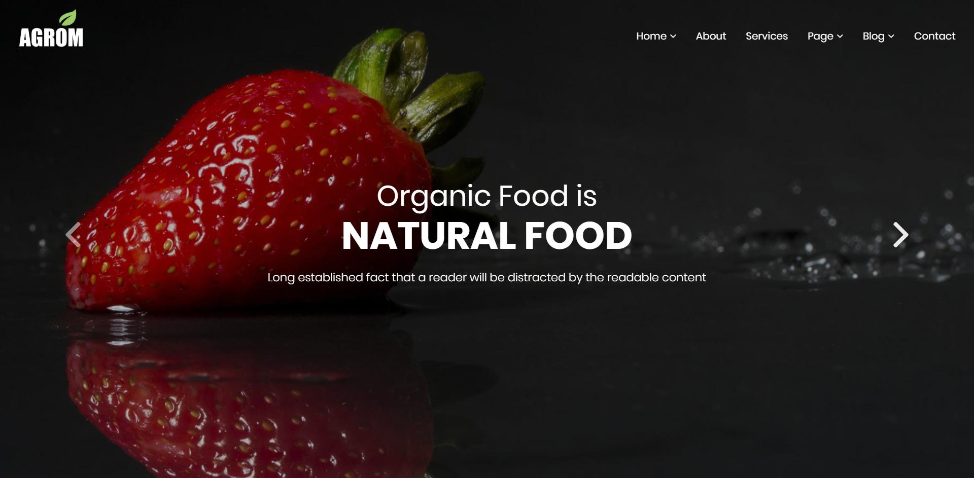 Agrom-有机蔬菜水果农业食品WordPress主题