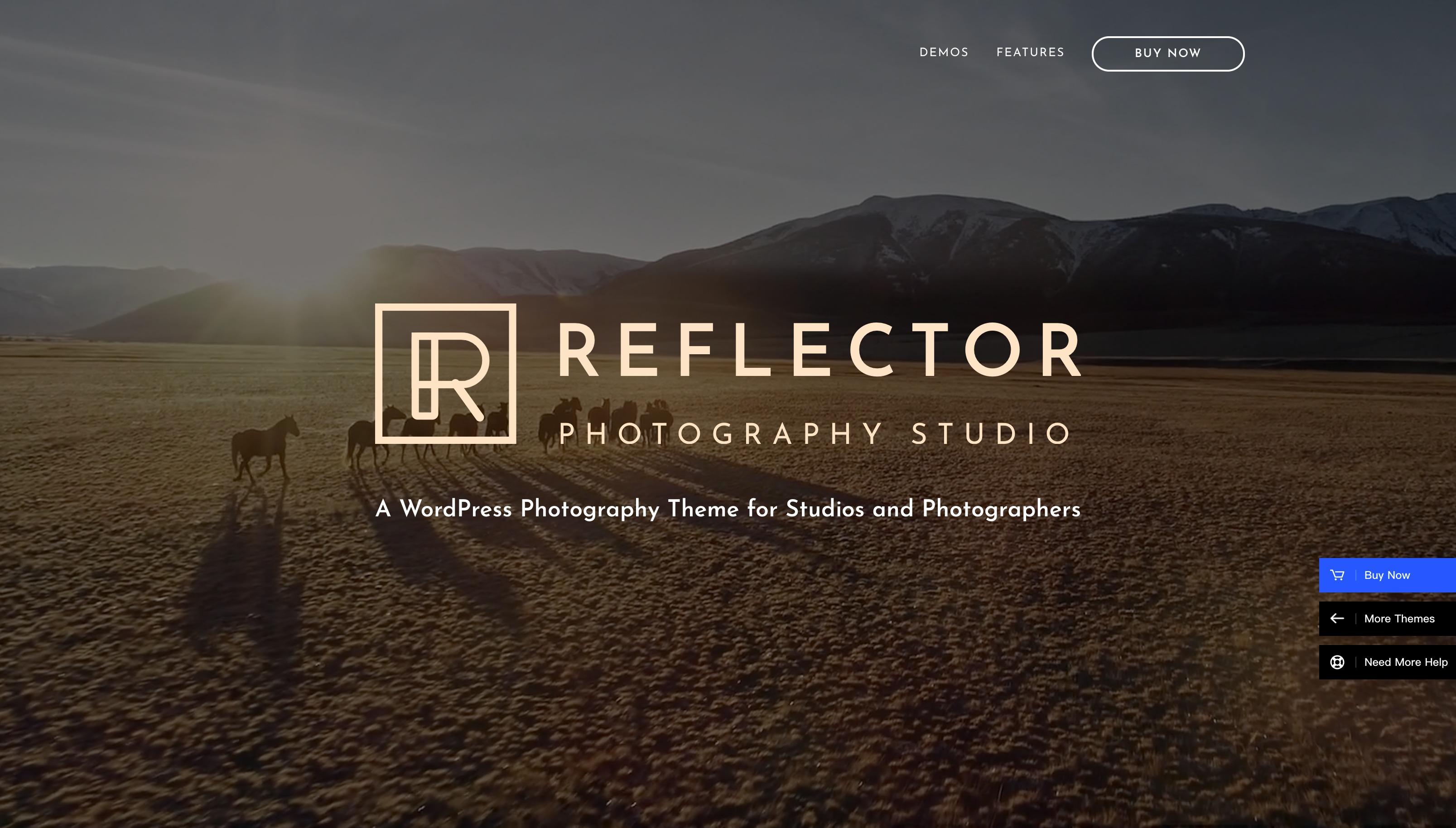 Reflector-摄影工作室图片展示WordPress主题
