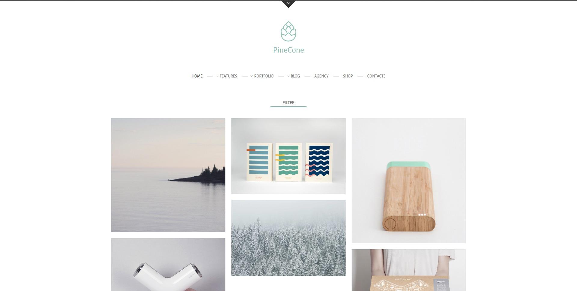 PineCone-无限加载创意作品展示WordPress主题