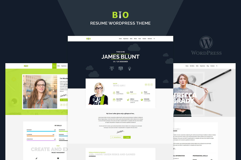 Resume - 个人简历作品展示WordPress主题模板
